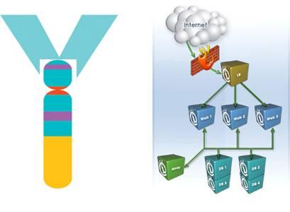 Y-STR Database